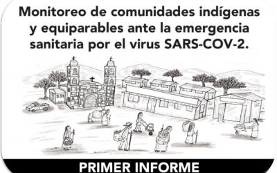PRIMER INFORME: Monitoreo de comunidades indígenas ante la emergencia sanitaria por el virus SARS-COV-2